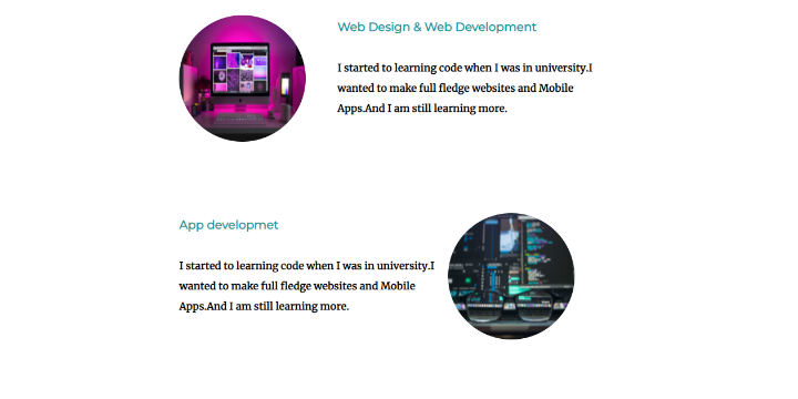 specialist portfolio image Front End Of my professional websites