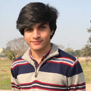 Savvy Specialist Syed Zark Ali Shah