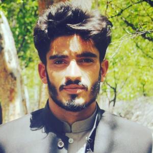 Savvy Specialist Syed Zakir Hussain